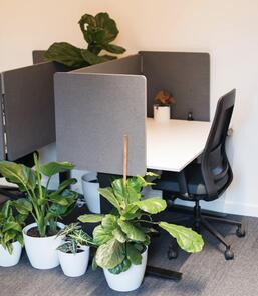 Dedicated-Desk-Plus
