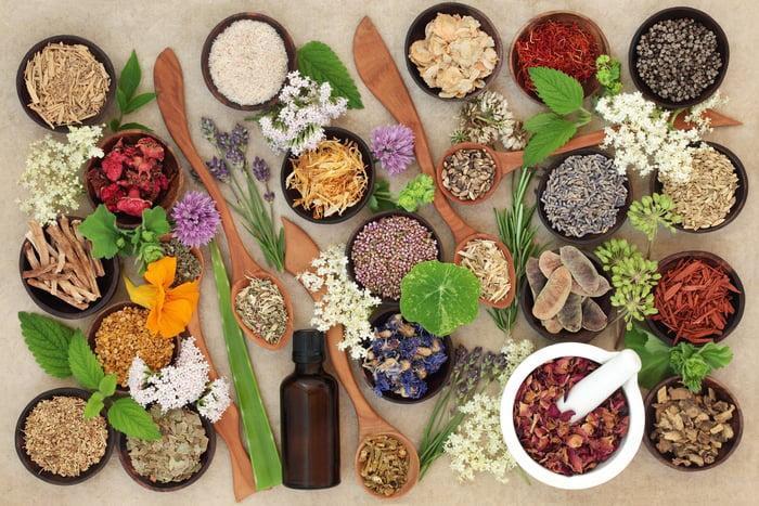 herbalism blog